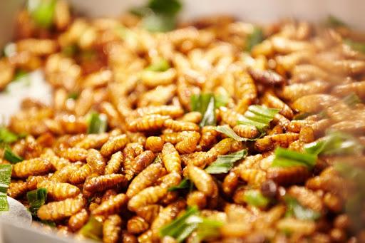 Ấu trùng ong